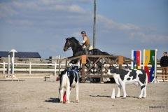 20150927-WE-Gesves-552