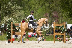 working_equitation_speed_trial_virginie_dubus_on_olienco